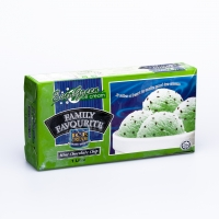 1 LITRE FAMILY PACK MINT CHOCOLATE CHIP